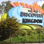 Six Flags Discovery Kingdom - 001