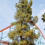 Six Flags Magic Mountain - Goliath - 004